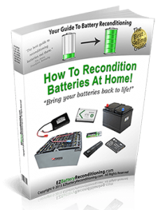 EZ Battery Reconditioning System